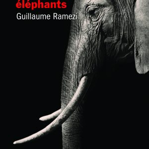 Le crépuscule des éléphants